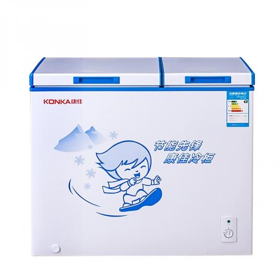 206升 双门冷柜 BCD-206DZP