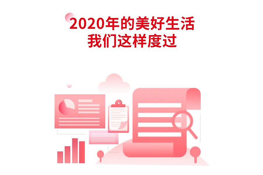 2020康佳年度数据报告