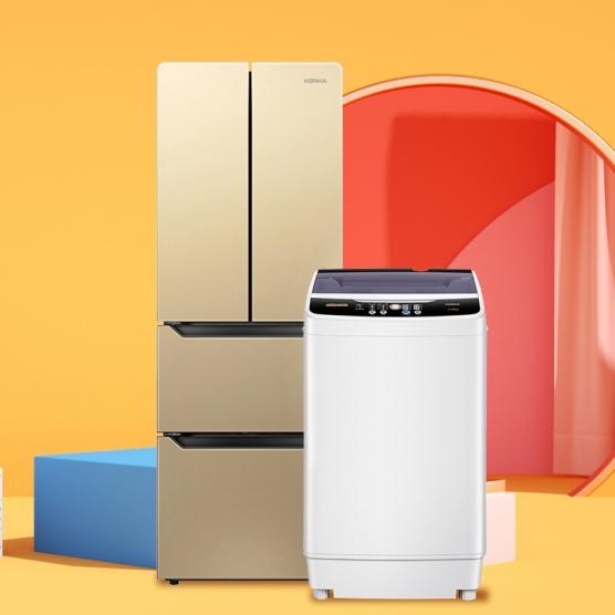 居家必备  法式风情冰箱+简易波轮洗衣机